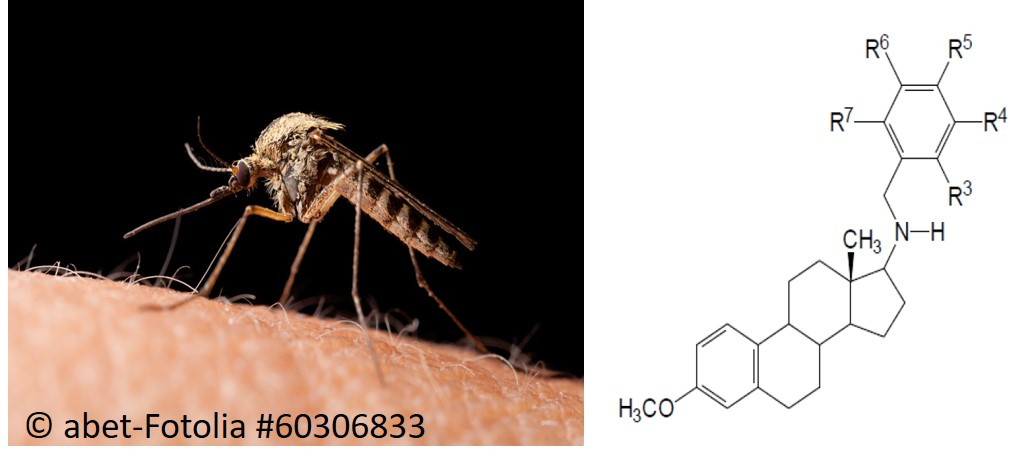 Steroid-based compounds against Malaria